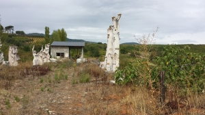 Camino215 301