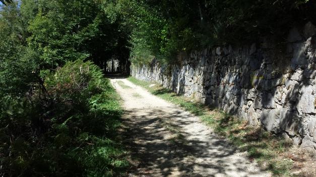 Camino215 347
