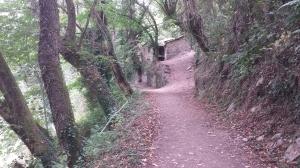 Camino215 372