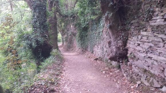Camino215 373